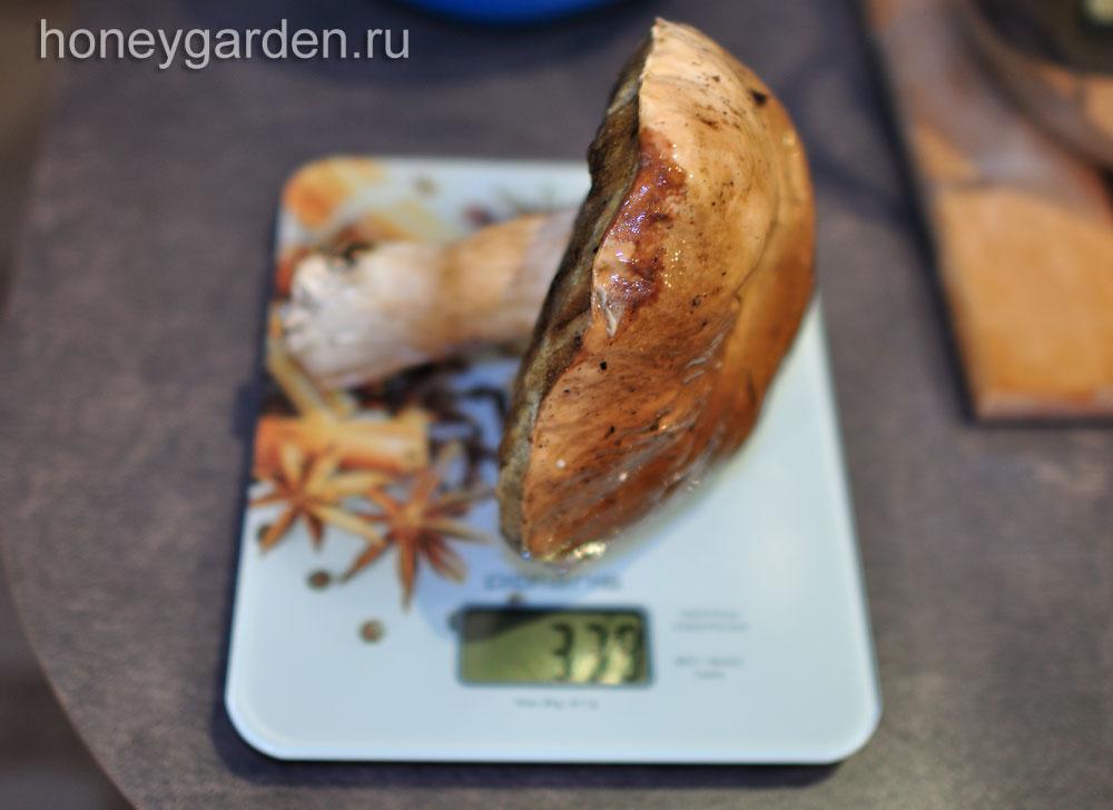 вес этого белого гриба 339 грамм