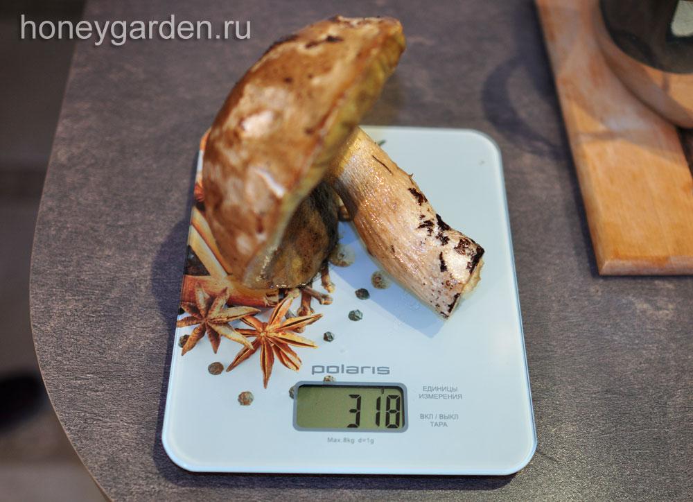 вес этого белого гриба 318 грамм
