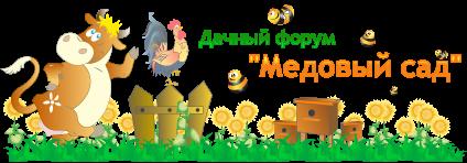 Дачный форум 'Медовый сад'